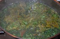 Chicken Nettle Soup with Sorrel - Step 8