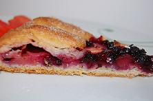 Apple and Blueberry Galette (Vegetarian)