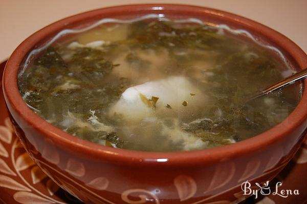 Chicken Nettle Soup with Sorrel